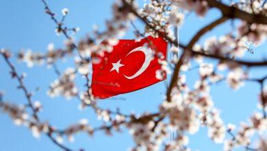 """Photo of """"Sen Türk bayrağı çiz"""" diyen Yunan öğretmen"""