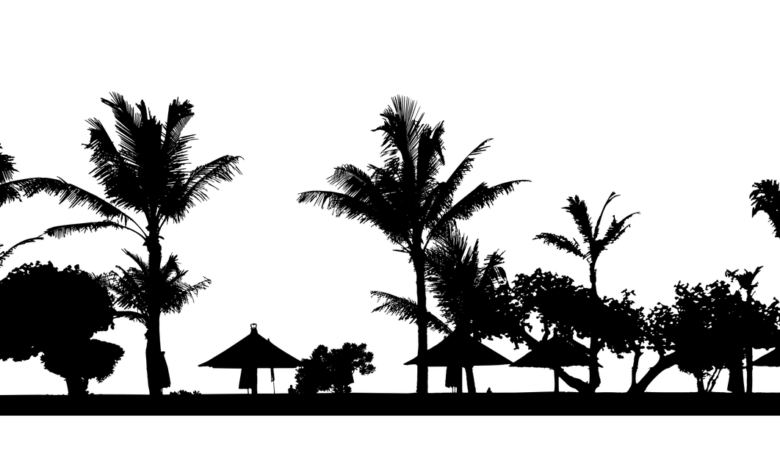Endonezya Nasıl Müslüman Oldu? | Mithat Tayyar 1