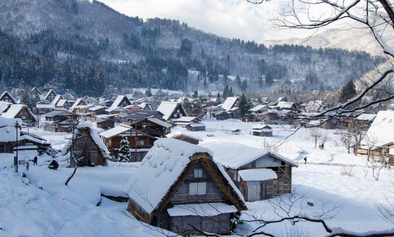 Bir köy, bir iğne ve bir harf  | Zekeriya Çiçek 1