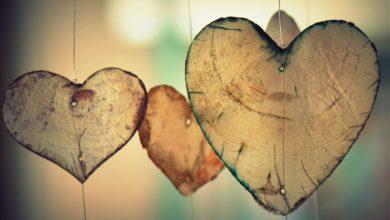Kalp yarma merakımız   M. Nedim Hazar 3