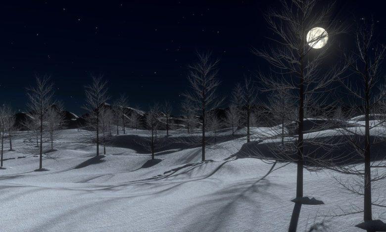 Kesintisiz Beyaz Geceler | Harun Tokak 1