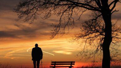 Photo of Yalnız Gibisin | Safvet Senih