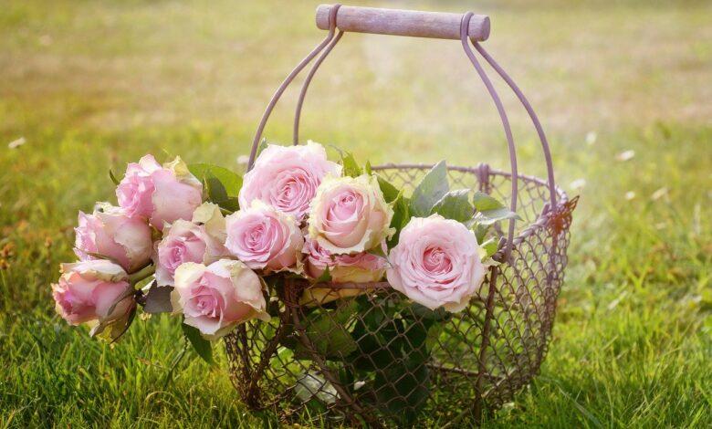 Çiçekler hep koklanmaz ki ! | Zekeriya Çiçek 1