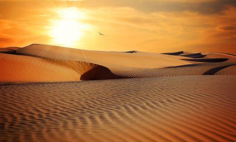 Hamrâü'l-Esed'e Doğru 1