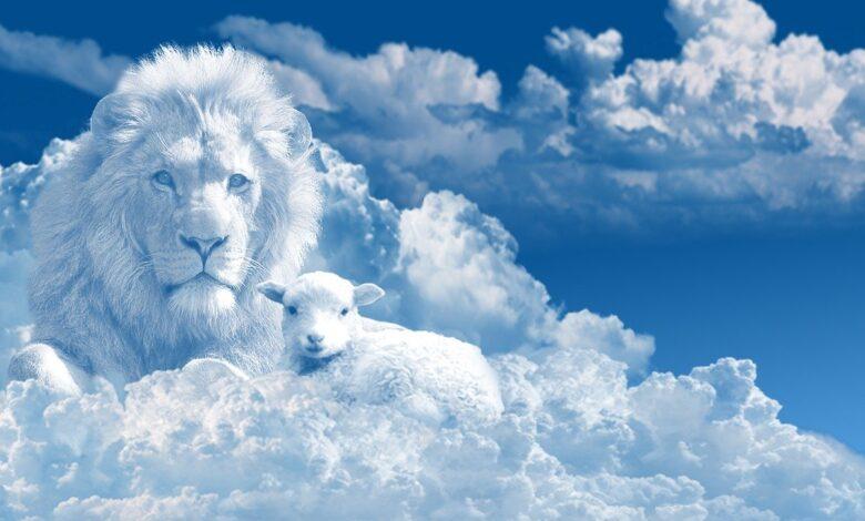 Allah'ın (cc) musallat ettiği aslan | İsmet Macit 1
