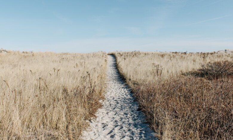 Farkına varmadan söylenen sözler | Abdullah Aymaz 1