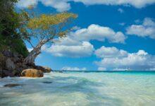 Cehennemden azat edilmek ister misin? | Safvet Senih 13