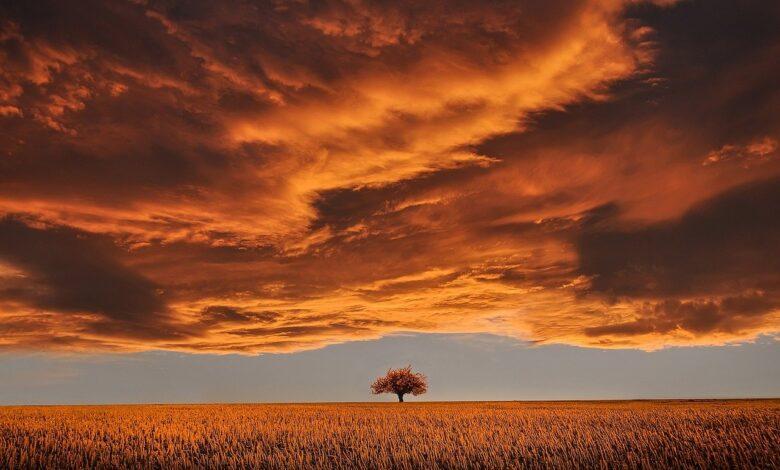 Efendimiz'in (sas) eğitim felsefesi (3): donanıma dikkat | Yücel Men 1