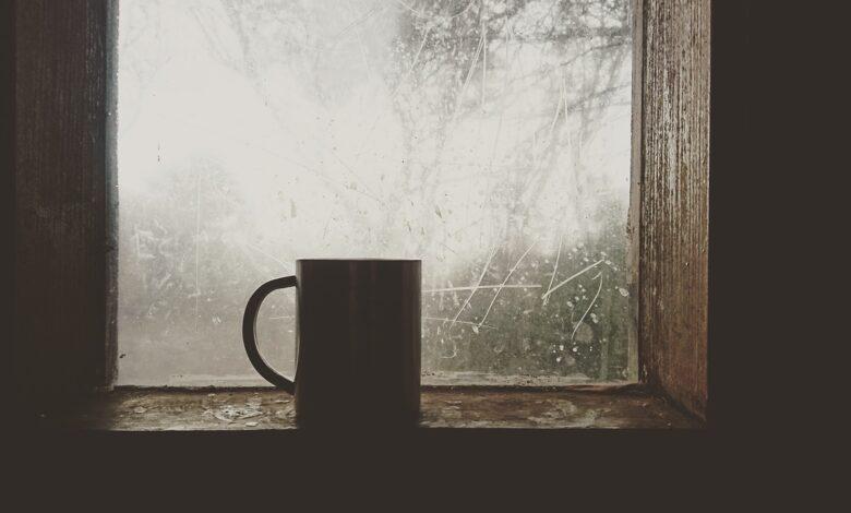 Pencereden…| M. Nedim Hazar 1