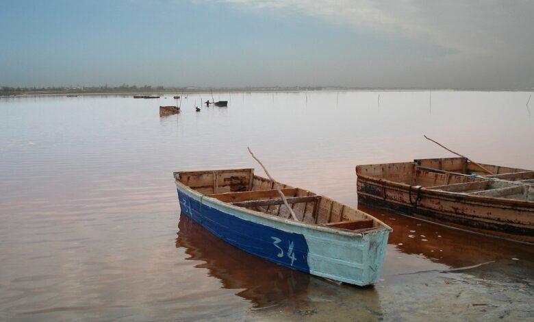 Hayatın rengi Senegal | Mustafa Ertuğrul 1