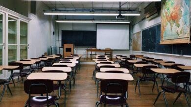 Dört cahil yirmisekiz okul | Mustafa Ertuğrul 5