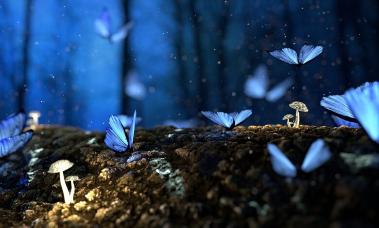 Kamil insan ve tefekkür münasebeti   Zekeriya Çiçek 1
