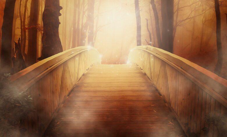 Dinden uzaklaşmak / uzaklaştırmak toplumu uçuruma atmaktır! | Prof.Dr.Muhittin Akgül 1