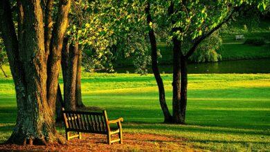 Mahşer günü kabirden çıkar gibi | Abdullah Aymaz 3