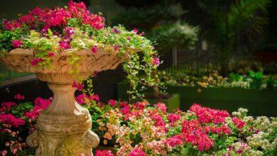 Zorla Cennet'e götürmek caiz mi? | Veysel Ayhan 2