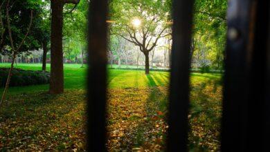 Demir parmaklıklar gerildi önlerine | İsmet Macit 19