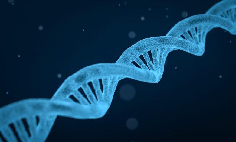 Evrim teorisinin mekanizmaları (2) | Dr. Yüksel Çayıroğlu 1