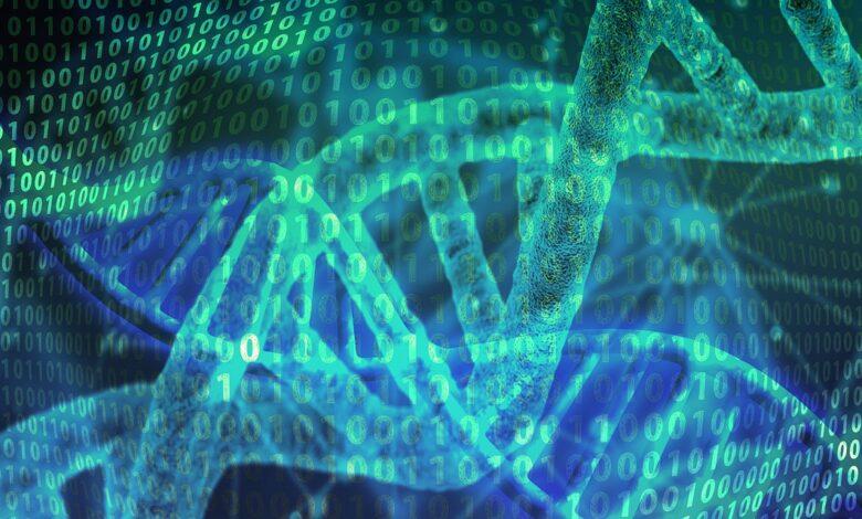 Evrim teorisinin kanıtları (5. Yazı)   Dr. Yüksel Çayıroğlu 1