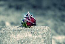 Felâket ve helâket asrında samimi insanlar | Fikret Kaplan 8