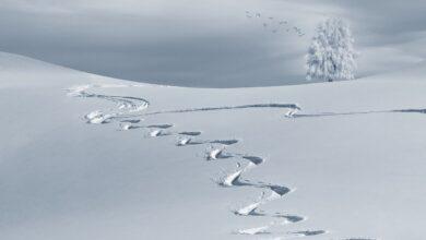 Yusuflar destanı | Yusuf Kar 30