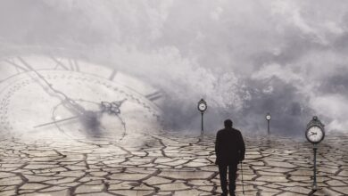 Zamanın çıldırtıcılığı ve Nebevî duruş | Reşit Haylamaz 3