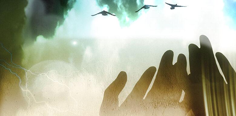 Musibetten hakikî tevhide giden yol 1